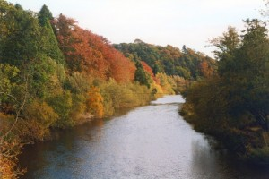 The river at Abbey St Bathans